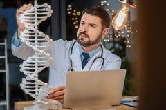 Ernster intelligenter Forscher, der Genetik studiert lizenzfreies stockbild