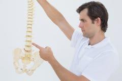 Ernstige mannelijke arts met skeletmodel Royalty-vrije Stock Afbeeldingen