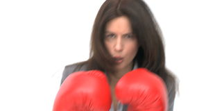 Ernstige onderneemster met bokshandschoenen stock video
