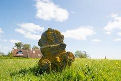 Ernstige werf in Nederlandse Terschelling Royalty-vrije Stock Foto's