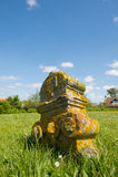 Ernstige werf in Nederlandse Terschelling Royalty-vrije Stock Afbeeldingen