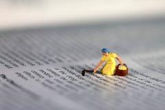 Ernte auf einem Buch Stockfotos