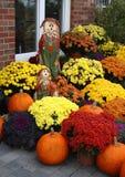 Ernte-Blumen-Bildschirmanzeige Stockfotografie