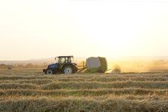 Ernte des Weizens Stockfotos