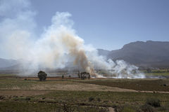 Ernte, die auf einem südafrikanischen Bauernhof brennt Lizenzfreie Stockfotos