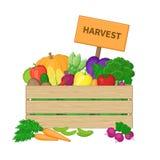 Ernte in einer Holzkiste mit Brett Kiste mit Herbstgemüse Neues biologisches Lebensmittel vom Bauernhof stock abbildung