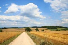 Ernte-Felder und Straße stockfotos