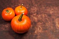Ernte-Hintergrund mit orange Kürbis auf Holztisch Danke Stockbilder