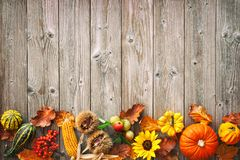 Ernte- oder Danksagungshintergrund mit herbstlichen Blättern, Früchte stockbild