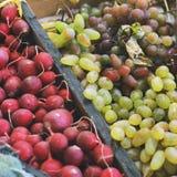 Ernte-Trauben, Rettiche und Mais lizenzfreie stockfotografie