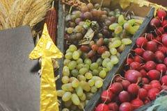 Ernte-Trauben, Rettiche und Mais lizenzfreies stockbild