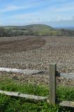 Erntefeld auf dem Sussex Southdowns Stockfotos