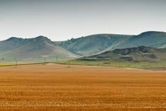 Erntefeld mit Bergen im Hintergrund Stockfotos