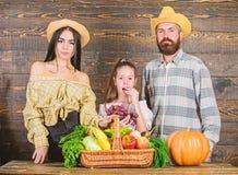 Erntefestkonzept Familienlandwirte mit h?lzernem Hintergrund der Ernte Eltern und Tochter feiern Erntefeiertag lizenzfreie stockbilder