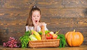 Erntefestkonzept M?dchenkinderfeiern rustikaler Art-Landwirtmarkt mit nettem Fallernte Kind Ernte lizenzfreie stockbilder