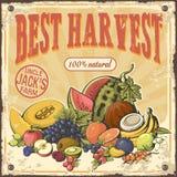 Erntefrüchte und Retro- Plakat der Beeren Lizenzfreie Stockfotografie