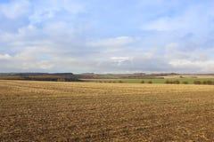 Erntelandschaft Stockbild