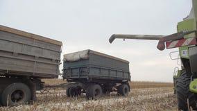 Erntemaschine auf dem Gebiet, das Mais sammelt stock video footage