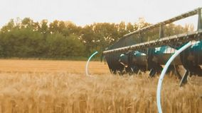 Erntemaschine entfernt das Feld des Weizenbrotlandwirtschafts-Zeitlupevideos Konzeptweizenlebensstilkorn-Grasernten stock video footage