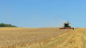 Erntemaschine erfasst den Weizen stock footage