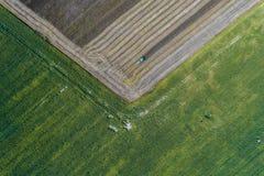 Erntemaschine erntet eine Ernte auf einem Gebiet nahe bei einem grünen Feld mit Mais ukraine Schattenbild des kauernden Geschäfts Stockbild