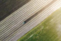 Erntemaschine erntet eine Ernte auf einem Gebiet nahe bei einem grünen Feld mit Mais ukraine Schattenbild des kauernden Geschäfts Stockfotos