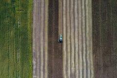 Erntemaschine erntet eine Ernte auf einem Gebiet nahe bei einem grünen Feld mit Mais ukraine Schattenbild des kauernden Geschäfts Stockfoto