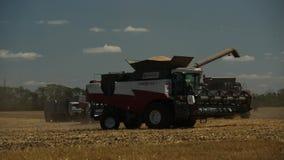 Erntemaschine findet auf dem Gebiet statt stock footage