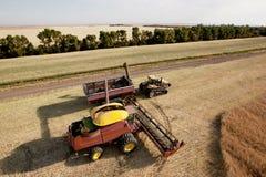 Erntemaschine mit Korn-Wagen Stockfoto