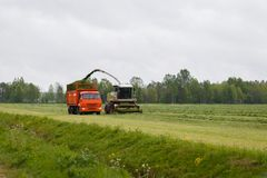 Erntemaschine sammelt trockenes Gras Lizenzfreies Stockbild