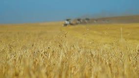 Erntemaschine und Landwirtschaft stock footage