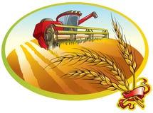 Erntemaschine- und Weizenohren Stockbild