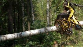 Erntemaschine zieht Baum stock footage