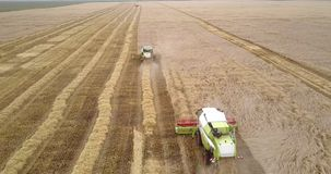 Erntemaschinen fahren die Erfassung des Weizens entlang Feld stock video