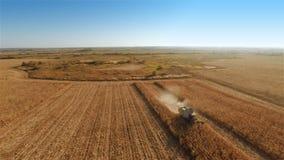 Erntemaschinenarbeit über Getreidefeld stock footage
