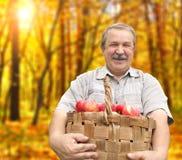 Ernten Äpfel stockfoto