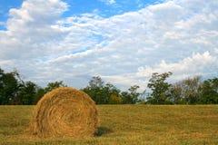 Ernten der Felder Stockfotos
