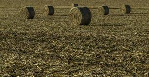 Ernten der Felder Lizenzfreies Stockfoto