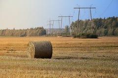 Ernten der Felder Landwirtschaftsfeld mit blauem Himmel und Stromleitungen Ländliche Natur im Ackerland Stroh auf der Wiese Stockfotos