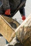 Ernten der Fische Stockfoto