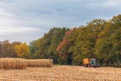 Ernten der Getreide im Herbst in den Niederlanden Stockfotos