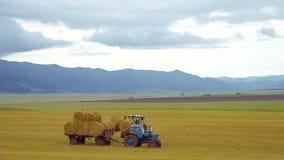 Ernten der landwirtschaftlichen Maschinerie Der Traktor lädt Ballen Heu auf der Maschine, nachdem er auf einem Weizenfeld geernte stock video