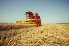 Ernten der Weizenerntemaschine an einem sonnigen Sommertag lizenzfreie stockfotografie