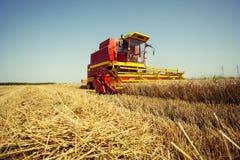 Ernten der Weizenerntemaschine an einem sonnigen Sommertag stockbilder