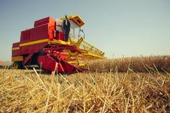 Ernten der Weizenerntemaschine an einem sonnigen Sommertag stockbild