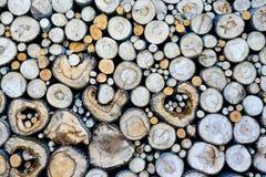 Ernten des Brennholzes lizenzfreies stockfoto