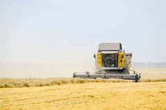 Ernten des Weizens mit einem Mähdrescher Stockbild