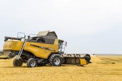 Ernten des Weizens mit einem Mähdrescher Stockfoto
