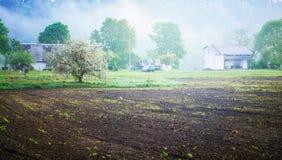 Ernten gepflanzt in der Landschaft Lizenzfreie Stockfotos