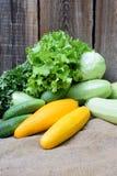Ernten Sie die Zucchini, Gurken, Kohl und Bündel Kopfsalat, verdünnt Stockfotografie
